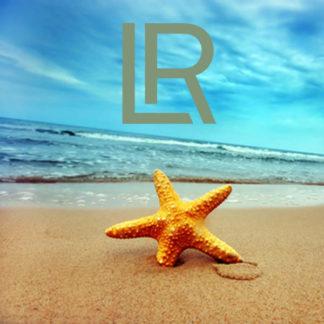 LR Summer limited